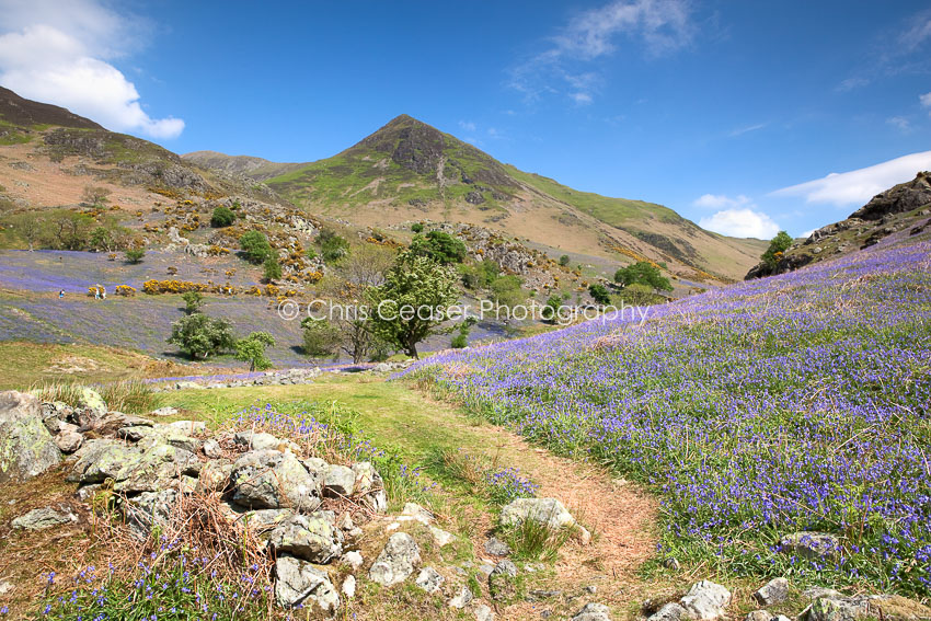 Into The Valley, Rannerdale