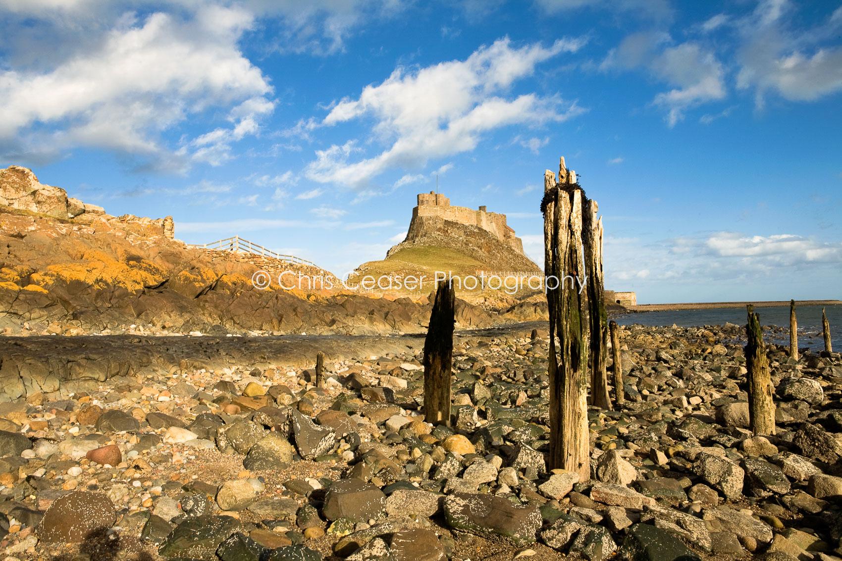 Morning Glory, Lindisfarne