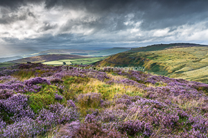 2, Summer. Towards Stanage From Higger Tor. 16x10.66 inch print, signed.