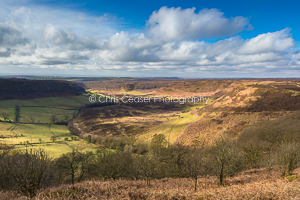 North Yorks Moors National Park