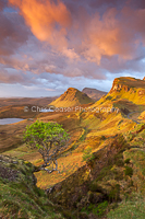 Branching out, The Quiraing