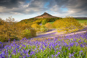 A Touch Of Blue, Roseberry Topping