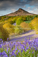 Card 432. Roseberry Topping