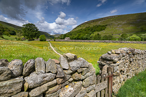 Into The Meadows, Swaledale