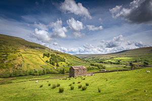 Head Of The Valley, Swaledale