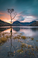 Autumn Sunrise, Buttermere