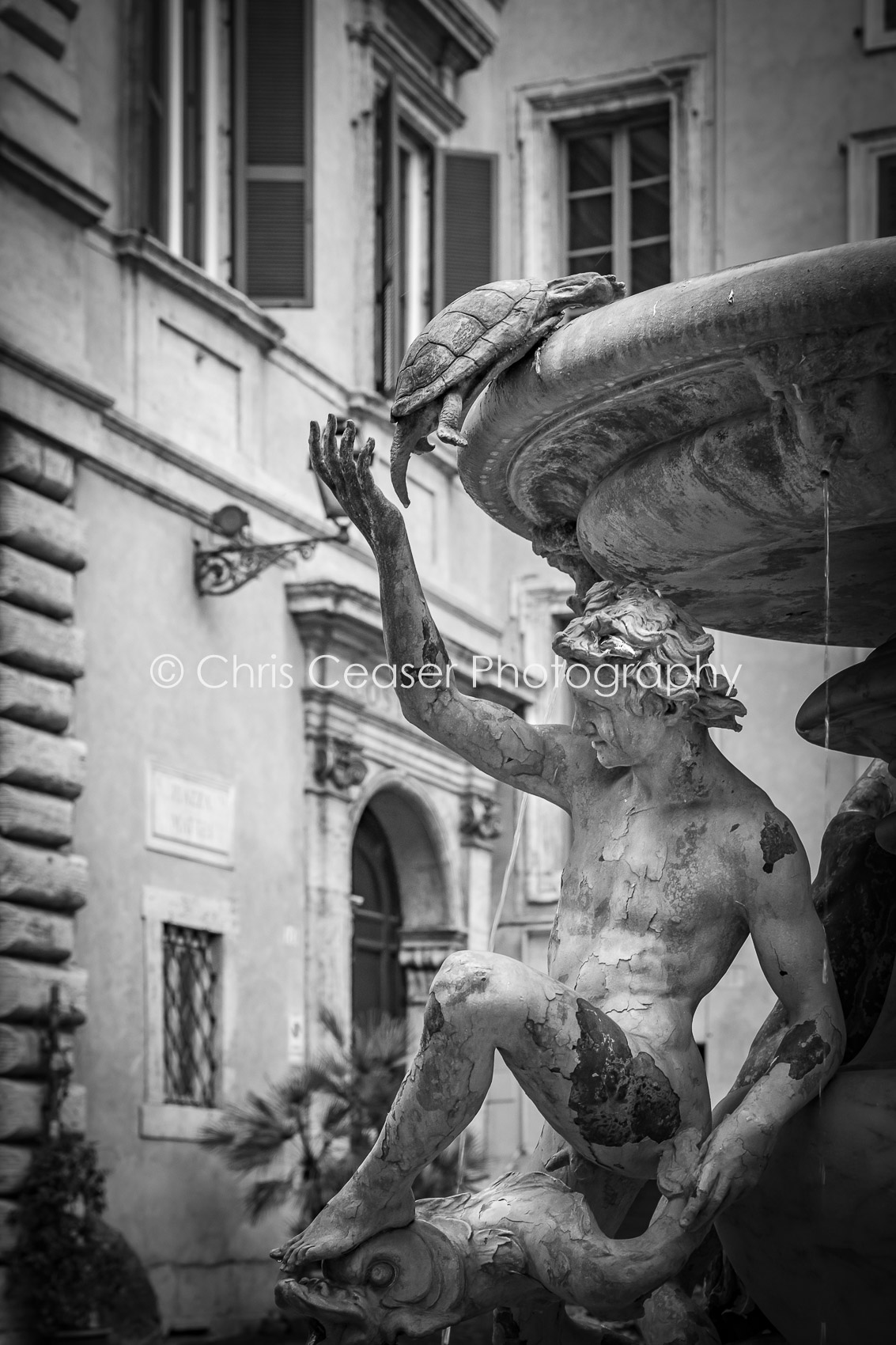 Fontana delle Tartarughe, Roma