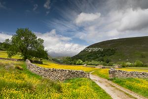 Yorkshire Dales Landscapes