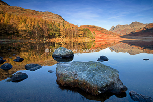 Across Blea Tarn, autumn