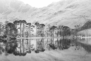 Natural Patterns, Buttermere