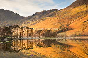Dawn reflections, Buttermere