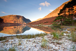 Frosted Shoreline, Crummock Water