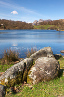 By Loughrigg Tarn