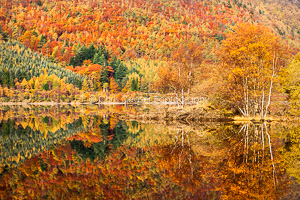 3, Autumn. 'Kaleidoscope, Thirlmere'. 16x10.66 inch print, signed.