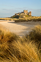 Through the dunes, Bamburgh