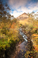 Autumn Colours, Rannoch Moor