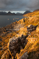 Black & Gold, Elgol